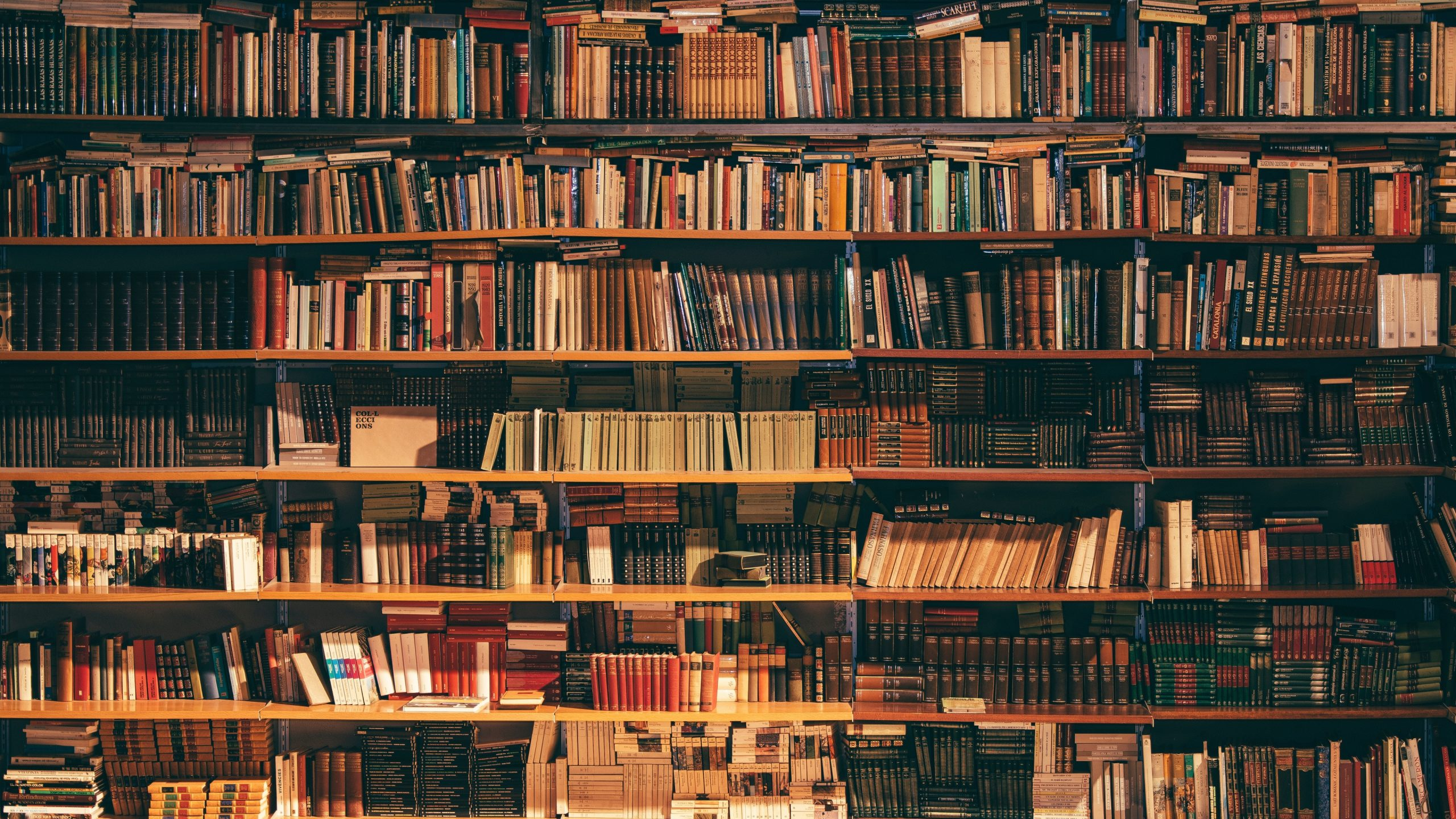 What To Read When You're Busy